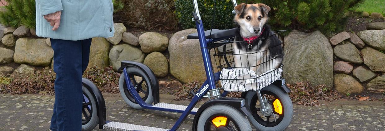 tretlator-hund